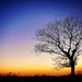 Flashback - Sunset by swillinbillyflynn