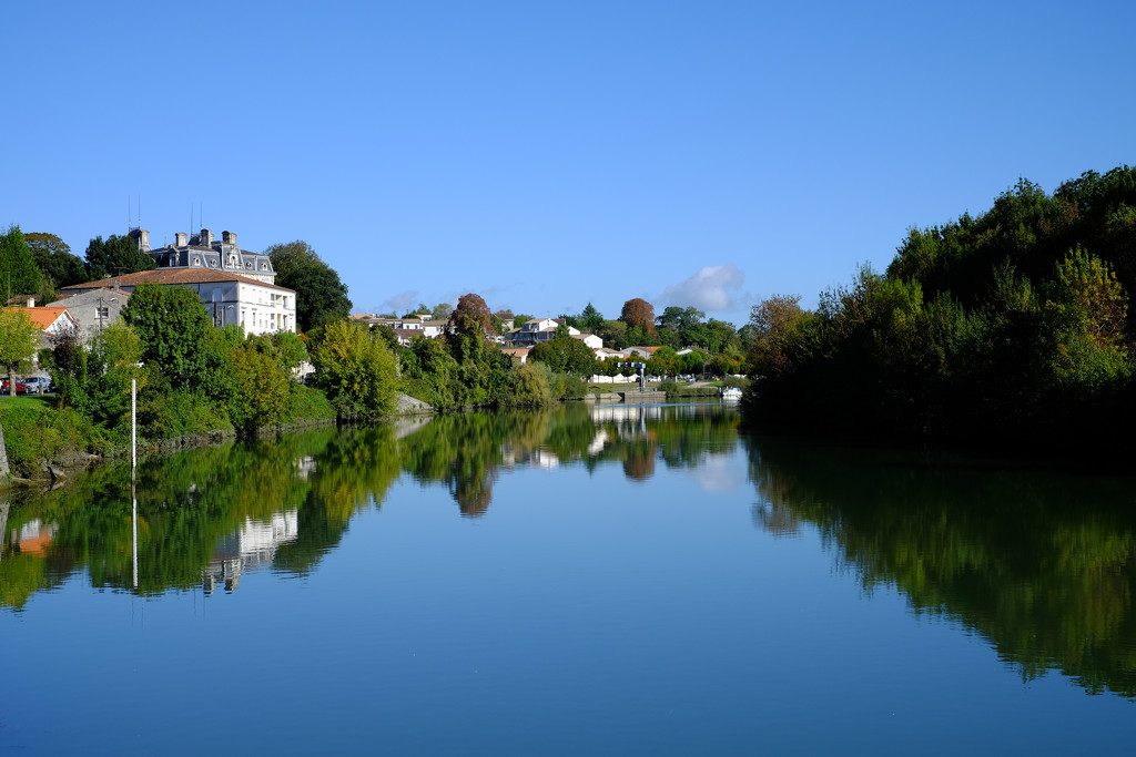 NF-SOOC-2015 Day 23: Reflections in the Charente by vignouse