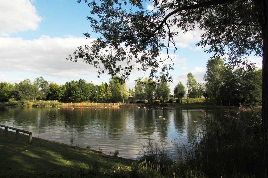 Day 2 -Bluewater Lakes - 100happydays2015 by bizziebeeme