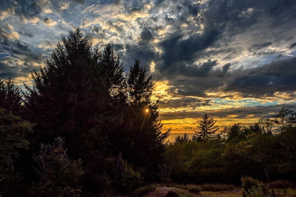 Sunset Star by jgpittenger