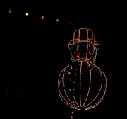 19th Nov 2010 - Electric Snowman