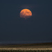 Super Harvest Moon by aecasey