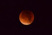 28th Sep 2015 - Blood Moon