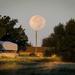 Super Moon Lollipop  by ckwiseman
