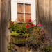 Window box by mccarth1