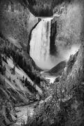 4th Oct 2015 - Lower Falls of Yellowstone
