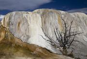 6th Oct 2015 - Mammoth Hot Springs at Yellowstone