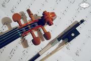 6th Oct 2015 - Violin