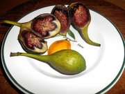 7th Oct 2015 - Home grown figs...