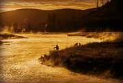 7th Oct 2015 - Madison River Fly Fishing