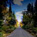 North Country Road by tosee
