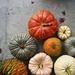 Not all Pumpkins are Orange