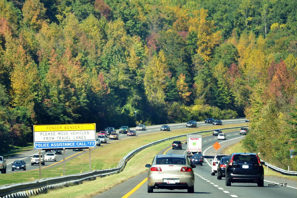 Autumn Drive by mhei