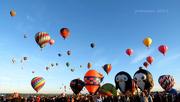 11th Oct 2015 - balloon fiesta 1