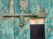10th Oct 2015 - Barn Door Web