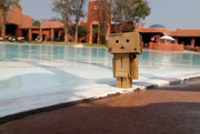 15th Oct 2015 - 2015 10 15 - Danbo in Zambia
