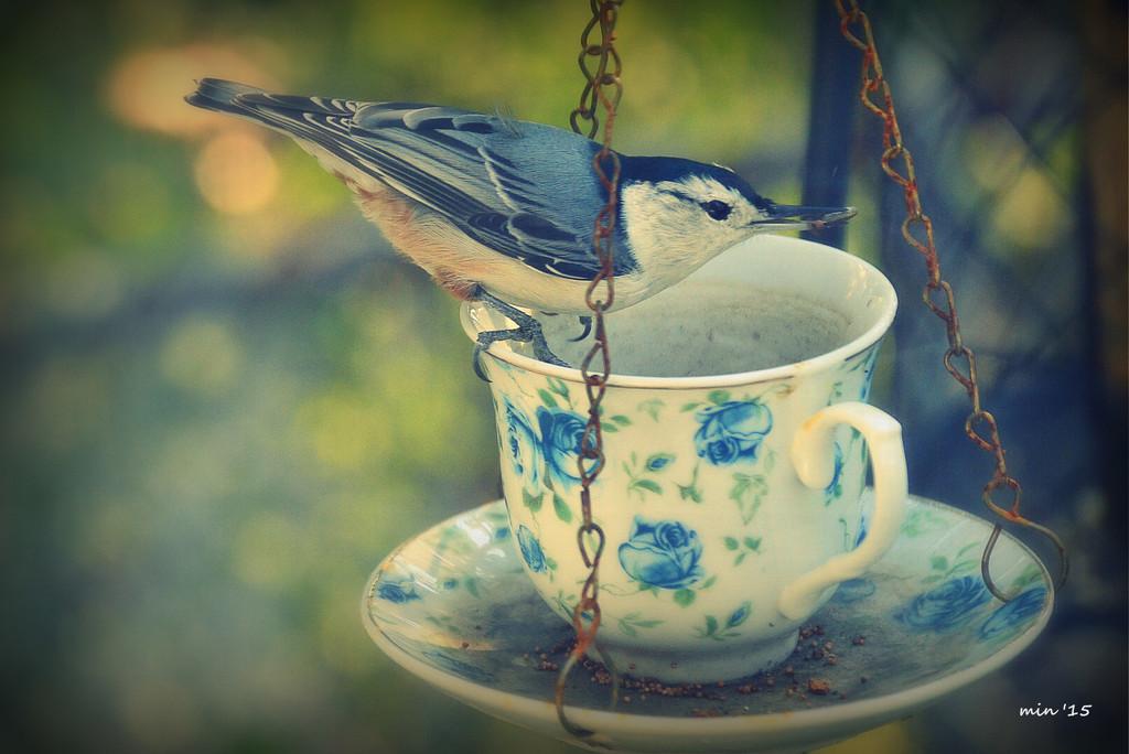 Morning Tea by mhei
