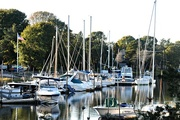15th Oct 2015 - Lots of boats to get out before it gets cold.