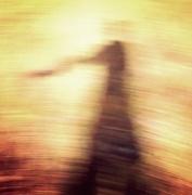 14th Oct 2015 - Shadow dancer