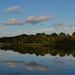 Ashley River at Magnolia Gardens, Charleston, SC by congaree