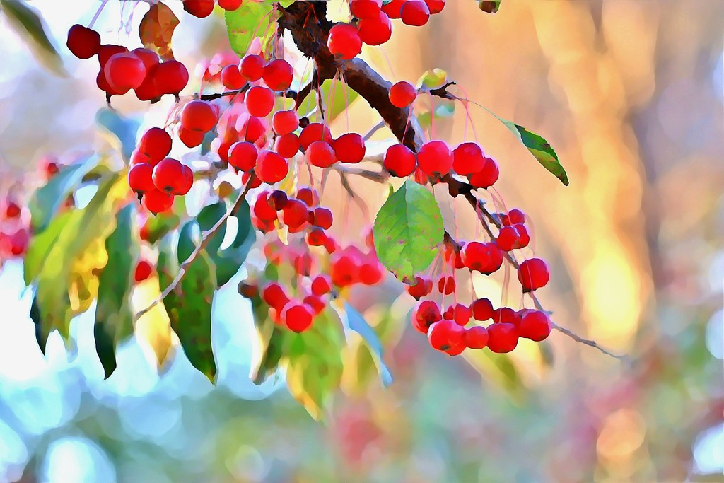 Painted Berries by lynnz