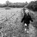 In the Field by newbank