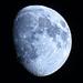 Moon Shot Octobrer 23rd by olivetreeann
