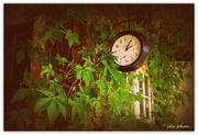 24th Oct 2015 - The garden shed.. Time in the Garden...