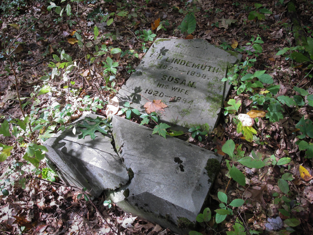 Headstone by mittens