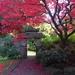 Biddulph Grange Garden by orchid99