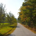 Country lane in Autumn, Dorchester County, South Carolina by congaree