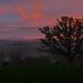 Misty sunset. by shirleybankfarm