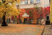 20th Oct 2015 - Københavns Universitet