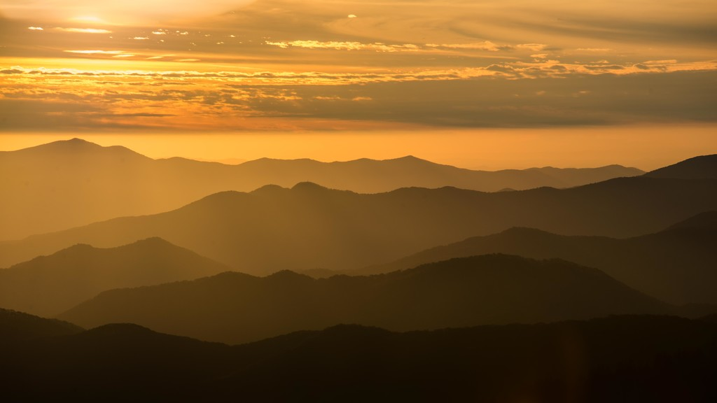 The Golden Glow of Sunset by taffy