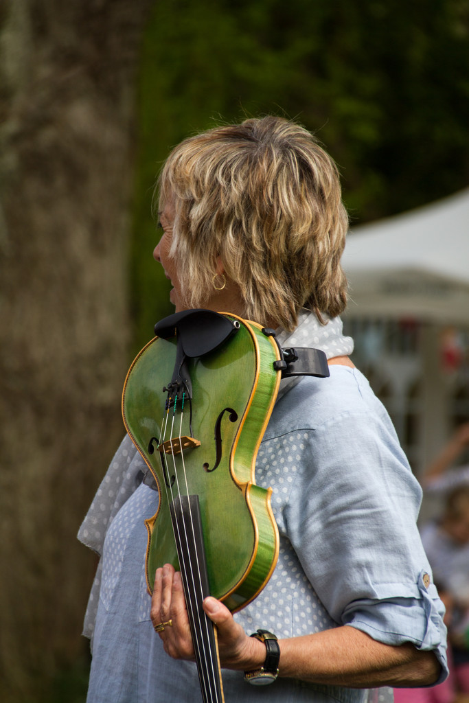 the green fiddle by jantan