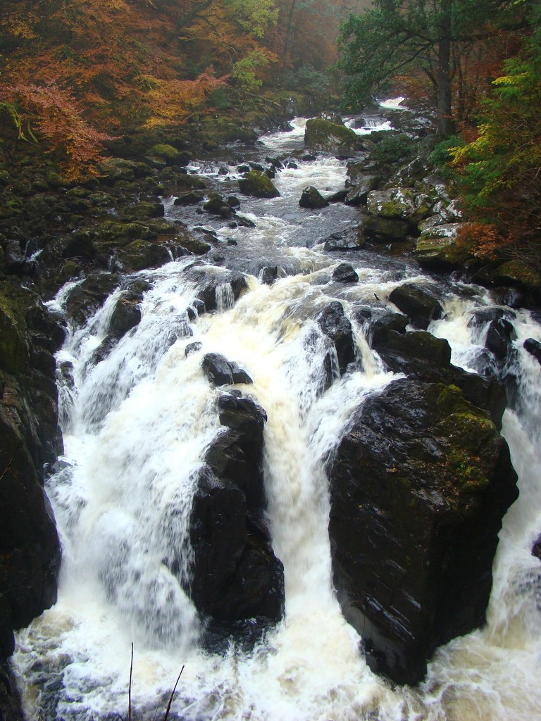 Falls of Braan by bulldog