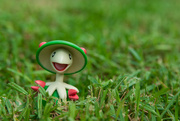2nd Nov 2015 - (Day 262) - Mushroom Dude