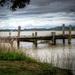 Muddy waters by maggiemae