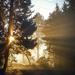 Foggy Morning by epcello