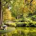 Japanese Gardens (Again) by lynne5477