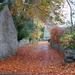orange carpet by shirleybankfarm
