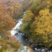 Autumn Colours in the Twyi Valley by susiemc