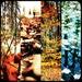 Bright autumn by mastermek