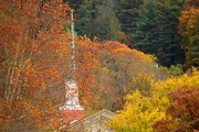 5th Nov 2015 - Divinely Autumn