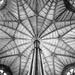 Westminster Abbey Ceiling by rosiekerr