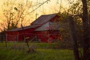 11th Nov 2015 - Red Barn