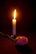 14th Nov 2015 - 2015 11 14 Pray for Paris