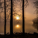 Foggy Sunrise    by radiogirl