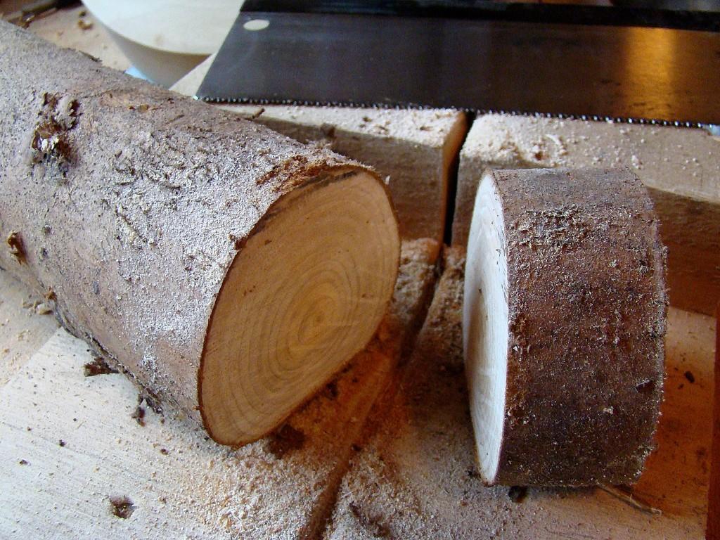 Yule Log by bulldog