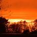 Orange sunset by dsp2